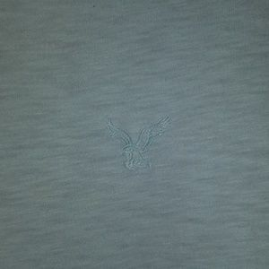 American Eagle Outfitters Shirts - Mens v neck t shirt